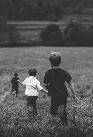 В России упростили оформление пособий на детей от трёх до семи лет