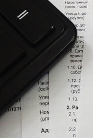 Советовавший меньше питаться россиянам депутат указал в декларации доход в четыре копейки