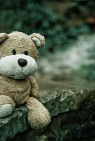 Пропавший в Подмосковье 10-летний мальчик найден мертвым