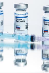 Названы сроки начала серийного выпуска первой в РФ вакцины от коронавируса