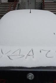 Российский союз автостраховщиков опроверг утечку данных автовладельцев из баз