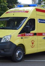 В Адыгее разработают схему, исключающую пересечение больных гриппом и коронавирусом