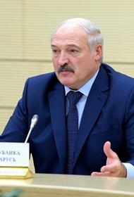 На Украине назвали возможный сценарий отстранения Лукашенко Западом и Россией