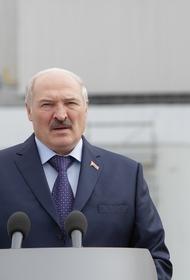 Алексей Пушков раскрыл единственную причину интереса Запада к Белоруссии