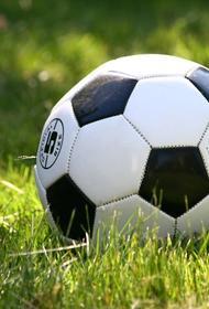 В чемпионате Германии хотят разрешить, чтобы зрители присутствовали на трибунах