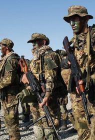 Берлин боится, что Россия захватит Африку