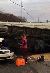 Жители Новороссийска просят губернатора Кубани запретить зерновозы