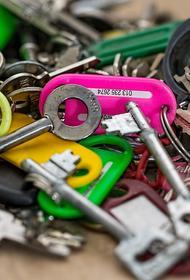 В Москве медики вытащили связку ключей из желудка маленького мальчика
