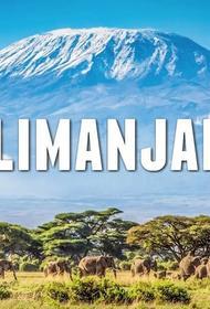Открыты для полетов Танзания и Занзибар: что интересного увидят туристы