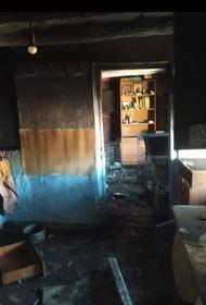 Во время пожара в частном приюте в Темрюке погибли животные и имущество