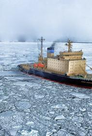 Эксперт объяснил «повышенный интерес» США к Арктике