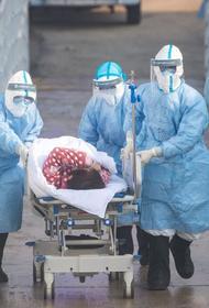 Китай заявил, что как минимум в трех провинциях страны распространяется ещё один летальный вирус
