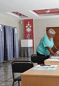 За период досрочного голосования на выборах президента в Белоруссии проголосовали около половины избирателей