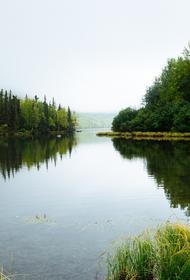 В Нижних Сергах река Заставка вышла из берегов