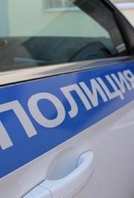 В Петербурге  уроженец Чечни нанёсший телесные повреждения сотруднице полиции