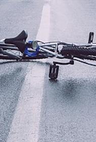 Автомобиль насмерть сбил семилетнего мальчика под Волгоградом