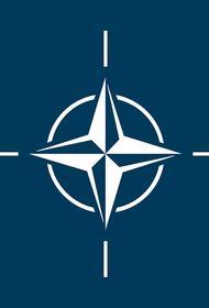 В НАТО прокомментировали ситуацию в Белоруссии