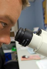 Врач назвал отличие COVID-19 от «нового летального вируса» из Китая