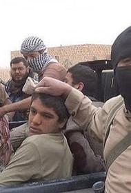 Проамериканские боевики похищают мирных граждан на востоке Сирии