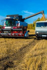 Эксперты оценили качество жизни селян Челябинской области