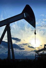 Российский экспорт сырой нефти уменьшился на 35%, а газа на 50%