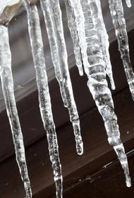 Владельцу балкона вынесли приговор за убитую глыбой льда старушку