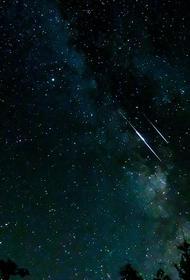 Жители Кубани увидят самый сильный «звездный дождь» в ночь на 13 августа