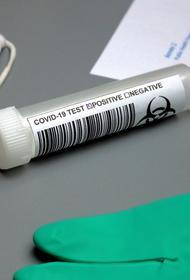 Вице-премьер Трутнев сдал положительный тест на COVID-19