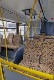 Власти Челябинска объявили аукцион на закупку низкопольных автобусов