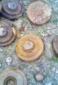 В Сирии на мине подорвались мирные жители