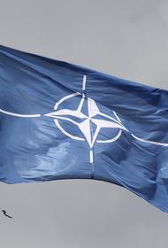 Болтон: Трамп может объявить о выходе Соединенных Штатов из НАТО до выборов