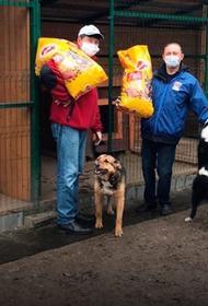 С начала акции «Лучший друг» в Москве собрано 2,5 тонн кормов для бездомных животных