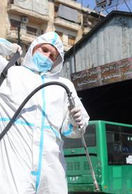 Войска РХБЗ РФ помогают сирийцам бороться с коронавирусом