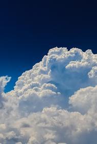 Синоптики рассказали, какая погода ожидается в Москве 17 августа