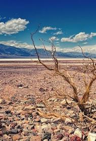 В Долине Смерти зарегистрировали самую высокую температуру на планете