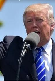 Трамп заявил о профнепригодности Обамы и поэтому пошел в президенты