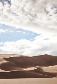 Исследователи рассказали, как появление Сахары повлияло на развитие цивилизации