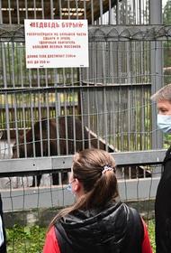 Алексей Текслер навестил медведя Малыша в Саткинском районе