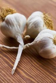 Диетолог перечислила продукты, способные укрепить иммунитет осенью