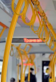 В Санкт-Петербурге пассажирка, которая отказалась оплатить проезд, избила кондуктора троллейбуса