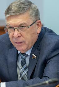 Сенатор считает, что третьей выплаты по 10 тысяч рублей, скорее всего, не будет