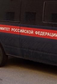 Пять человек упали в выгребную яму и погибли под Воронежем
