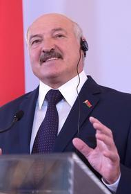 Белорусский юрист оценил законность появления 15-летнего сына Лукашенко с автоматом