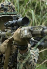 Во время перемирия в Донбассе снайпер уничтожил старлея из «княжеской» бригады ВСУ