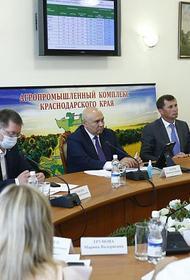 Ситуацию на продовольственном рынке Кубани признали стабильной