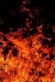 Из жилого дома в Москве, где произошел пожар, спасли четырех человек, среди них - маленький ребенок