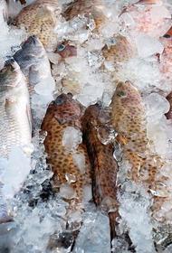 Замороженную рыбу теперь разрешено хранить два года