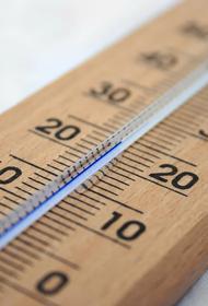 В Москве 1 сентября ожидается 30-градусная жара