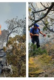 Пожар в Утрише: хронология