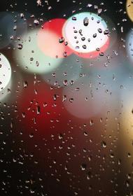 В Москве сегодня ожидаются похолодание и дожди